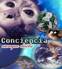 11_conciencia_aunque_duela